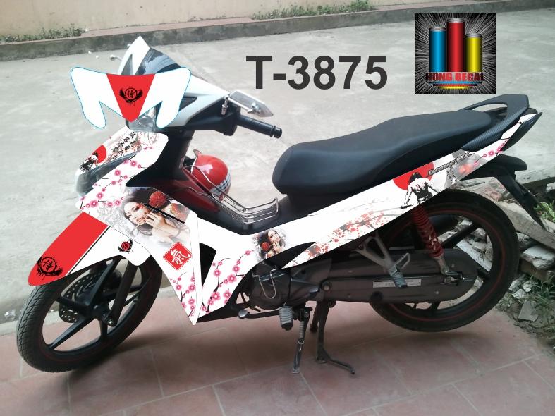 T-3875
